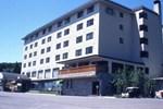 Отель Hotel Selan