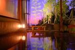 Отель Sakaeya