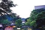 Отель Kinugawa Park Hotels