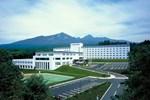 Отель Oizumi Kogen Yatsugatake Royal Hotel