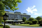 Отель Fuji View Hotel