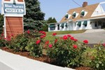 Отель Blue Spruce Motel & Townhouses
