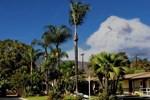 Отель Palm Tropics Motel