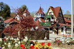 Мини-отель Black Forest B&B