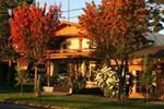 Отель Hotel & Spa Araucarias