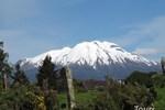 Hostal Patagonia Del Sur