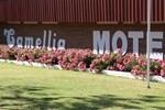 Отель Camellia Motel