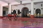 Отель Hotel SPA Taninul