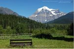 Mount Robson Heritage Cabins