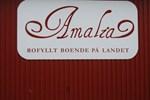 Мини-отель Amalia