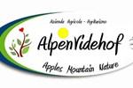 Отель Agriturismo Alpenvidehof