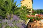 Отель Campastrello Sport Hotel Residence