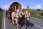 Отель Samsø Horse Wagons