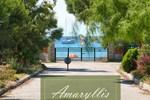 Апартаменты Amaryllis Summer Maisonettes