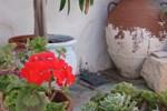 Гостевой дом Kyma sto Phos