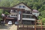 Гостевой дом Pensiunea Domnitei Sophie
