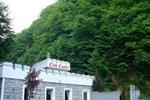 Гостевой дом Pensiunea Club Castel