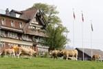Отель Frohwies