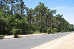 Holiday home Av. De La Foret