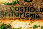 Отель Agriturismo Costiolu