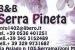 Отель B&B Serra Pineta
