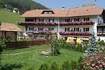 Отель Hotel Pausa