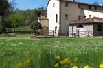 Отель Agriturismo Montassi E Bruscolaio