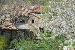 Luca's House