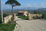 Отель Agriturismo Il Pino