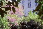 Мини-отель La Maison du Sénéchal