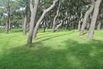 Апартаменты Parque de Campismo da Praia da Barra