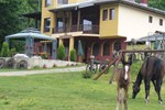 Гостевой дом Guest House Alfa Daniel