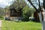 Гостевой Дом У Галины