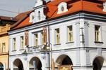 Отель Hotel Zlata Vcela