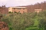 Мини-отель Podere San Francesco