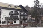 Отель Hotel Villa Alba