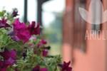 Гостевой дом Top Residence Arioli
