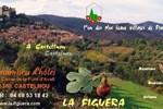 Мини-отель La Figuera