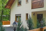 Апартаменты Casa de vacanta Pintea