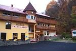 Гостевой дом Vila Transilvania