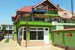 Гостевой дом Pensiunea Ambiental