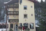 Гостевой дом Pensiunea Aniela