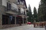 Гостевой дом Cabana Haiducilor