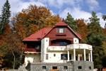 Гостевой дом Pensiunea Boema