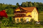 Гостевой дом Pensiunea Agape