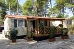 Holiday Village Zaton IV