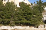 Апартаменты Apartment KruÅ¡evo 11
