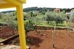 Гостевой дом Rooms Mediterranean Gardens