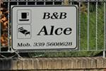 B&B Alce