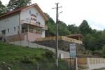 Гостевой дом Pensiunea Alpina